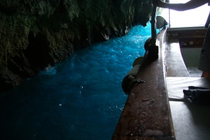 Capri Boat trip grotto