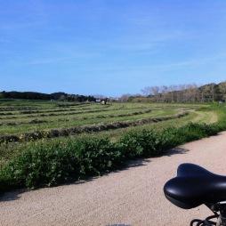 Cycling near Parafrugell