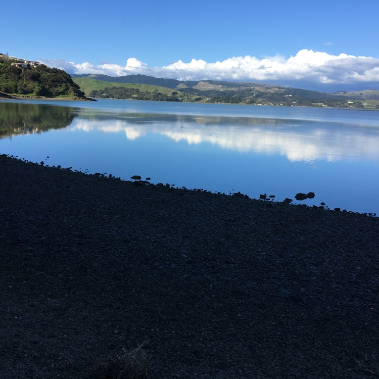 Pauatahanui Inlet