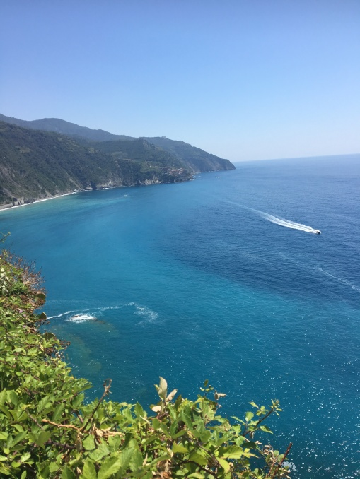 Views across the coast