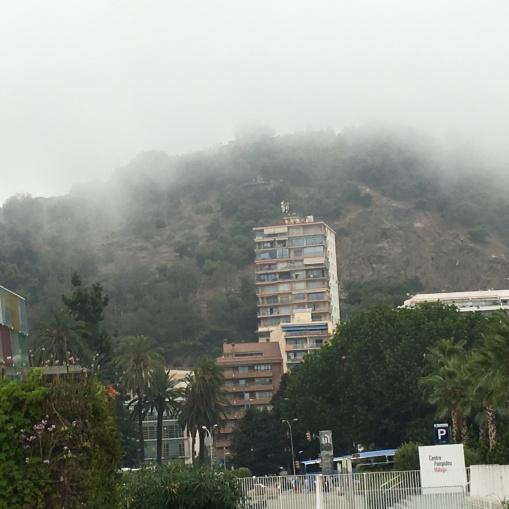 Misty Malaga