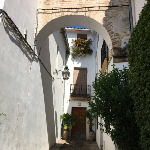 Hidden alleys in Cordoba