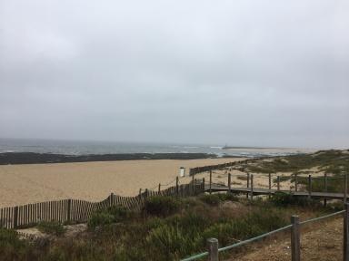 Misty Atlantic coast