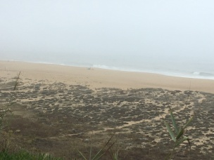 Misty Nazare without the giant waves