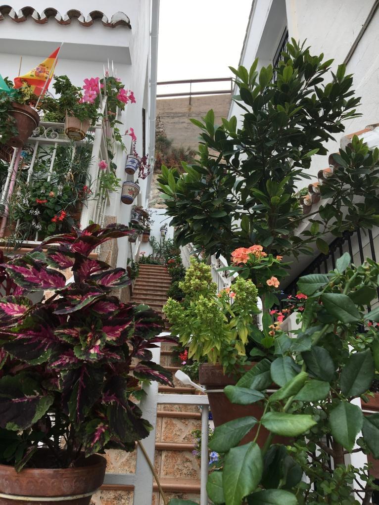 Mijas gardens