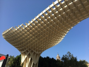 Amanzing timber structure
