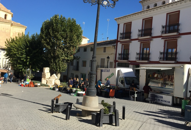 Orce market day