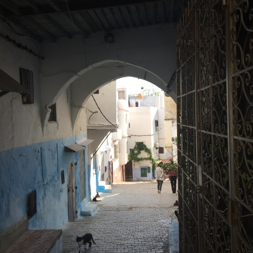 early morning wandering in Tangier old town