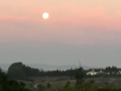 Lovely sunrise