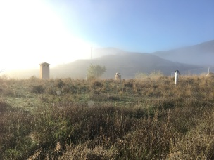 Chimneys in the morning mist