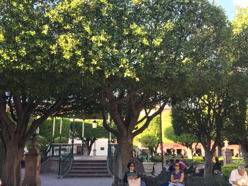 Trees and seating