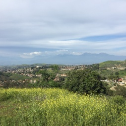 LA Countryside