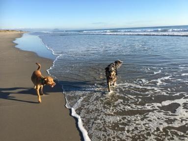 Papamoa Beach days...